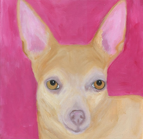 Bella Chihuahua custom dog portait painting by Leigh Jackson