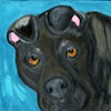A1568008 Original Pit Bull Mix Painting