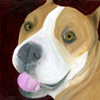 Happy Smiling Pit Bull Original Dog Art Painting