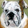 Low Dog Old English Bulldog