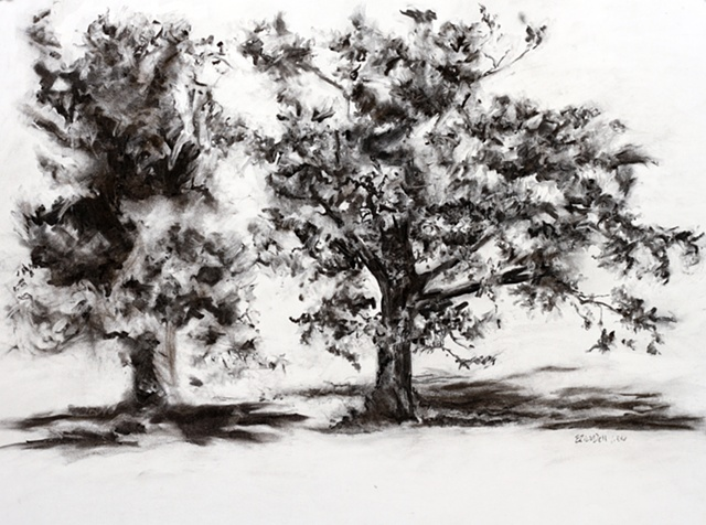 Two Trees, Panhandle of Florida, Highway 231