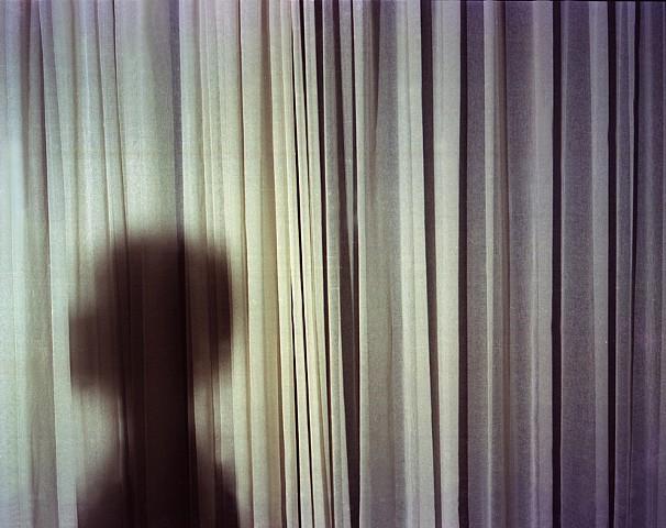 Shadow, 2012