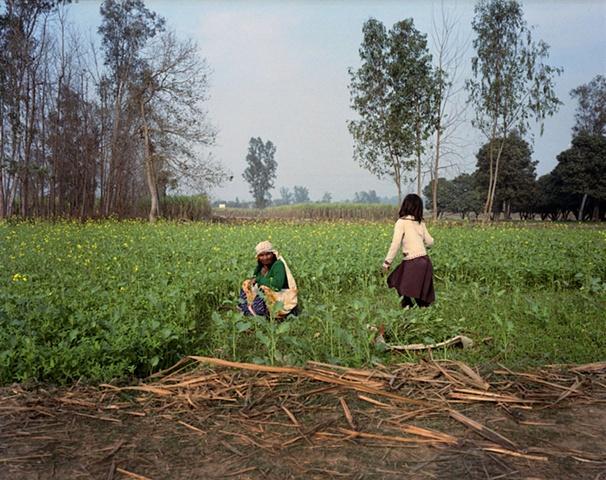 Farmers; Bhojpur, Uttar Pradesh