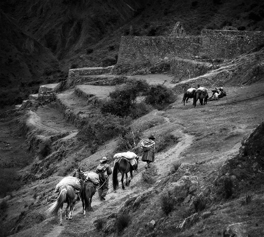 Encounter on the Inca Trail  June 2010