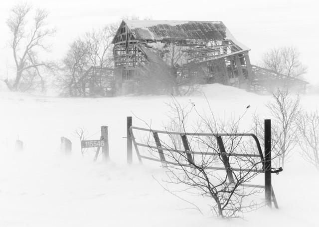 The Old Farm Gate  January 2014
