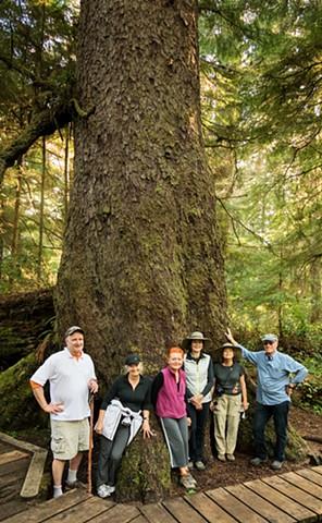 The Big Cedar  Sep 2016