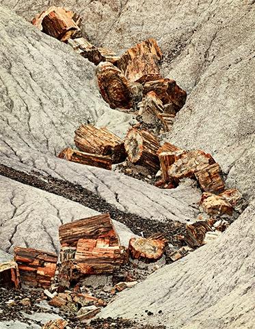 Petrified Tree Cascade  Sep 2011