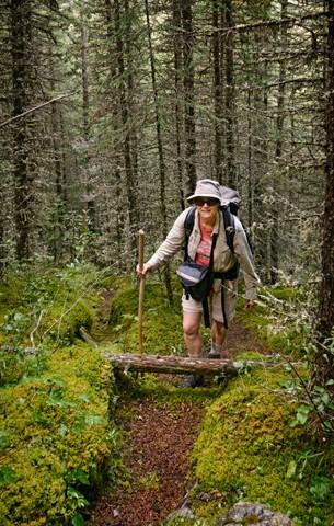 Mossy Trail II