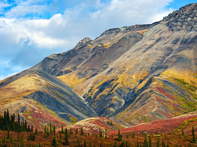 Fall in Tombstone Park  Sep 2014