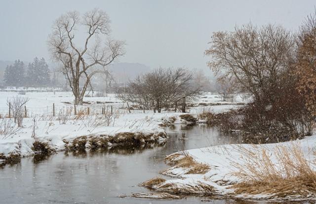 Bidhead River in Winter  Jan 2014