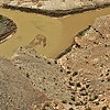 430 Apr 2010 Utah 407