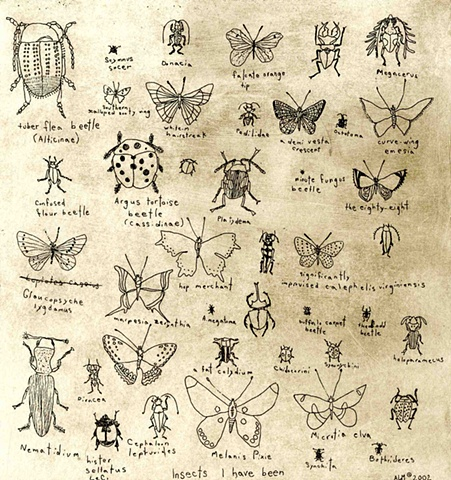 Insects I have been