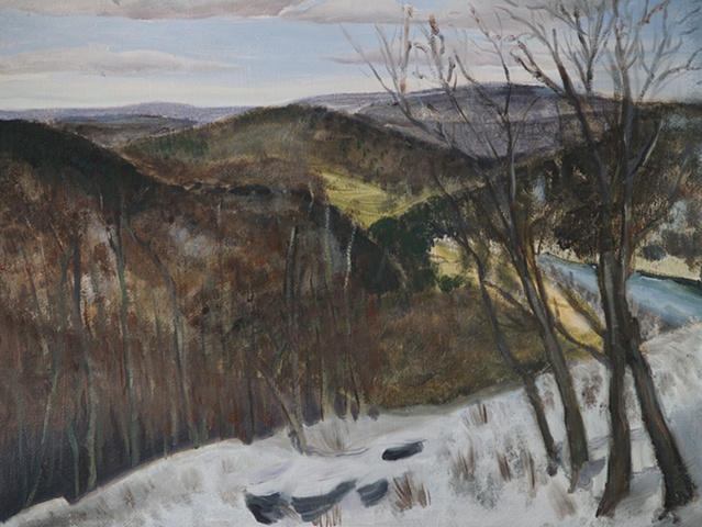 landscape of delaware river valley with snow in the winter