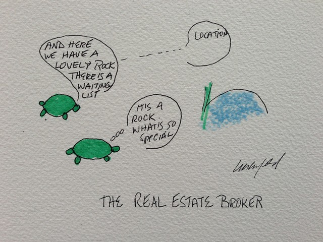 Green turtle looks at real estate