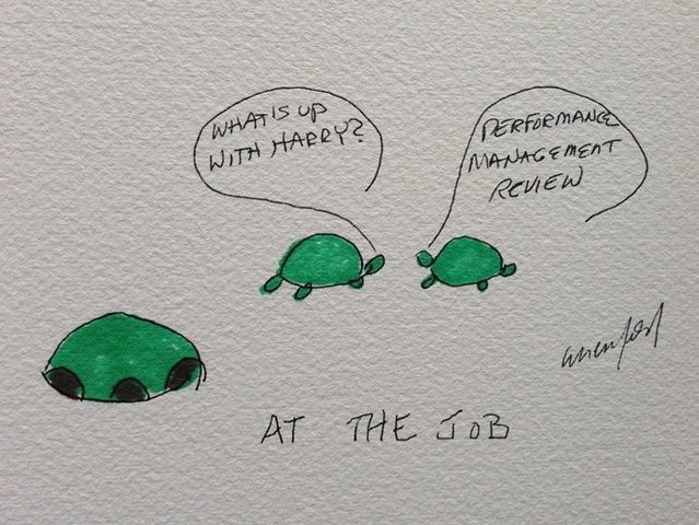 Turtle's reaction to performance management review