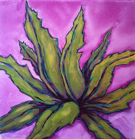 Texas botanicals, Agave on on violet background.