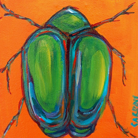 Portrait of a Beetle