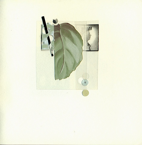 Untitled (leaf)