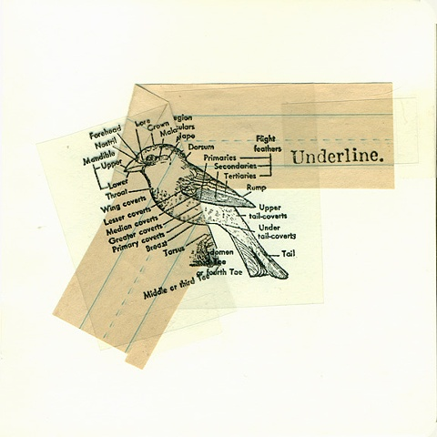 untitled (underline)