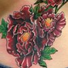 Cover Up - Flowers