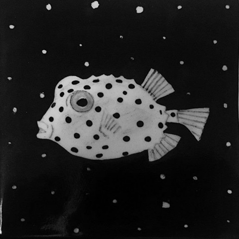 Polkadot Boxfish Tile