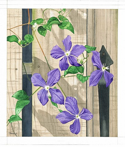 Clematis watercolor, purple flower, urban garden, city fence, home decor, purple