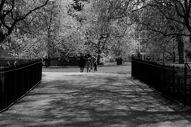 untitled (morning, hyde park)