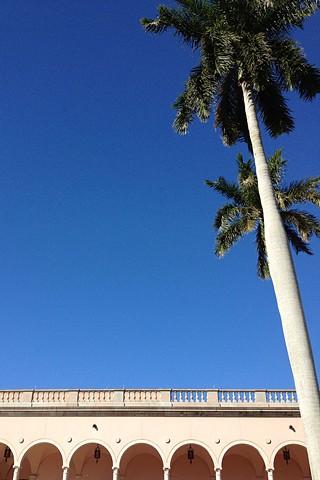 sarasota skies