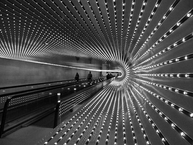 untitled (light moves)