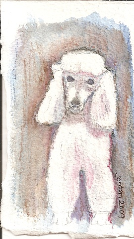 Watercolor pencil on paper depicting a poodle with a blue background