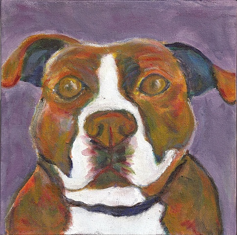 Brindle Pitbull painting