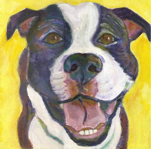 Pitbull pet painting