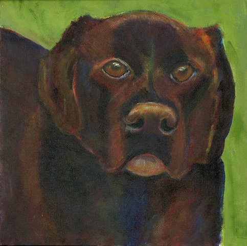 A chocolate lab painting