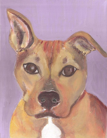 Custom pet painting of a pitbull