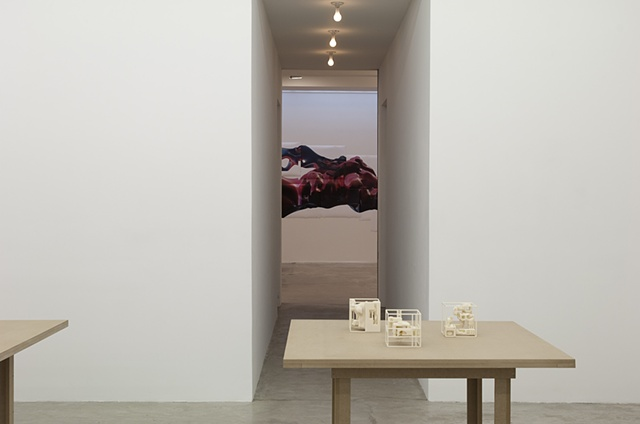 Installation View (Space Frame Redux)