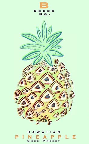 Pineapple Seed Packet