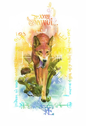 Red Wolf and Venus Flytrap