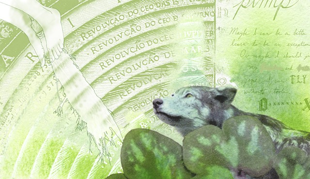 Wolf and Round-lobed hepatica (detail)