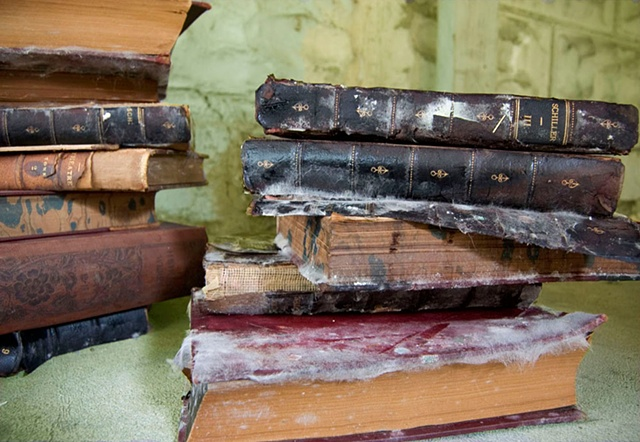 Old German books damaged in a flood grow mold photographed by Lucy Mueller