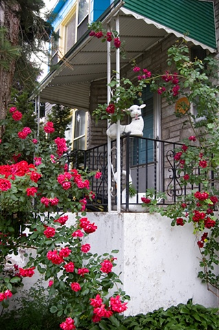 Lamb planter surrounded by rambling roses on the porch of a house photgraphed by lucy mueller