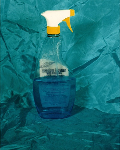 """Sense of Herself"" (Glass Cleaner) 1 out of over 750 different images 1995-present"