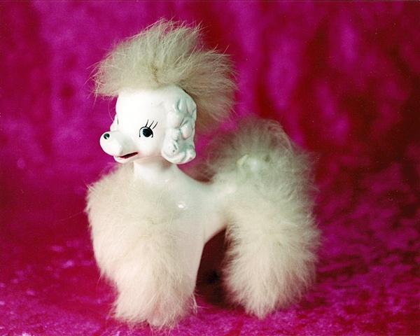 """""""Sense of Herself"""" (Poodle) 1 out of over 750 different images 1995-present"""