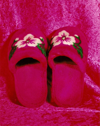 """Sense of Herself"" (Slippers) 1 out of over 750 different images 1995-present"