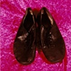 """Sense of Herself"" (Dance Shoes) 1 out of over 750 different images 1995-present"