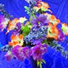 Can You Dig It? A Chromatic Series of Floral Arrangements (Purple)