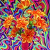 Can You Dig It? A Chromatic Series Of Floral Arrangements (Orange)