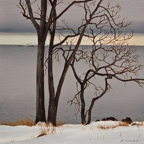 Neck Point in January- Garry Oaks