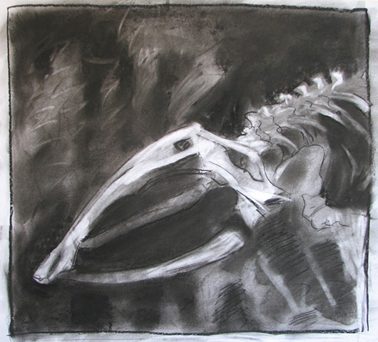Whale Skull (study)