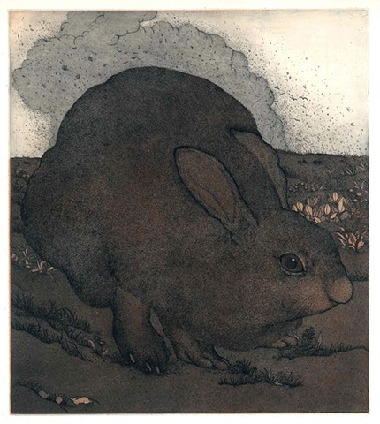 Hare rabbit etching aquatint
