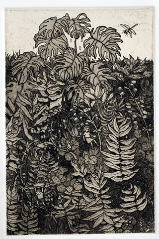 Etching and aquatint plants